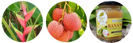 Le Comptoir Mélissa : les fleurs tropicales et les fruits de la Réunion