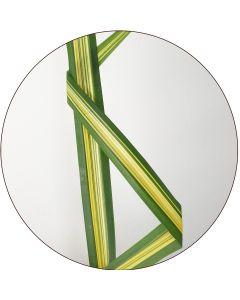 Pandanus panaché vert et Jaune (Botte de 10)