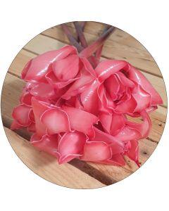 Petite rose de porcelaine rouge (botte de 5)